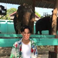 ploy_elephant